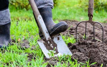 Dundee City garden maintenance companies