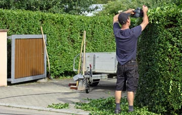 professional Dundee City hedge cutting services