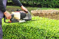 Dundee City hedge trimming services